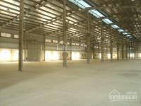 Cho thuê kho xưởng 4200m2, đường Trần Đại Nghĩa, Q. Bình Tân, đường xe container ra vào được