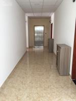 căn hộ ngay lotte mart q7 20m2 đến 50m2 phòng mới đẹp giá thuê từ 35trtháng