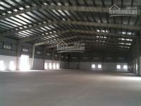 Cho thuê xưởng mới kcn đức hòa  dt 25000m giá 800tr