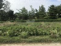cần tiền bán lô đất thổ cư 100 các trung tâm tp trà vinh 3 km giá 155 triệu