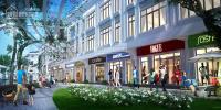 Bán shophouse kinh doanh thương mại mặt đường lê trọng tấn. cơ hội lớn để đầu tư hot nhất 2018