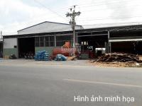 Cần cho thuê gấp kho xưởng 750m2 mặt tiền đường trần hải phụng, hướng đẹp, thuận tiện kinh doanh.
