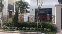 Cho thuê siêu biệt thự 7.1 diện tích 300m2 starlake kđt tây hồ tây giá 3500 đô