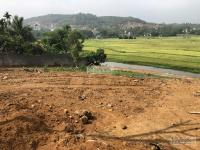 bán 1367m2 đất trang trại view cánh đồng tại lập thành đông xuân quốc oai giá 15 triệum