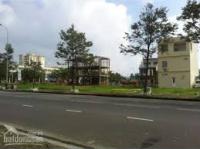 bán đất đấu giá 31ha dự án thuận an trâu quỳ gia lâm 0944224489