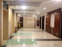 quản lý căn hộ cao cấp cho thuê tại td plaza 3 phòng ngủ 174m2 và 2 phòng ngủ 154m2 0936869522