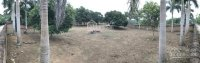 bán 4387m2 đất có trang trại thôn đồng trại xã cổ đông sơn tây hà nội