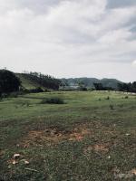 bán gấp 1ha 10000m đất làm nhà xưởng tại tiến xuân thạch thất chỉ cách đại lộ thăng long 15km