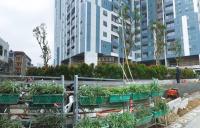 imperia sky garden thông tin cập nhật từ chủ đầu tư quà tặng cực hấp dẫn đầu năm lh 0987463546
