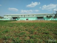 cần bán nhà xưởng xã đức lập thượng diện tích 3486 m2