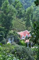 cần bán trang trại gần 2ha có sn villa 200m2 ở lương sơn hòa bình