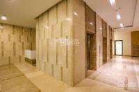 cần bán gấp căn hộ the golden star quận 7 view bitexco thủ thiêm 2pn 2 toilet giá 24tỷ nhà mới
