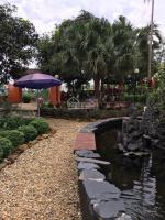 cần bán đất ở đất vườn 1910m2 đang kinh doanh homestay tại xã yên bài ba vì hà nội