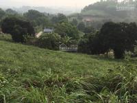 bán 54 sào đất trang trại đẹp số một tại xã hòa sơn lương sơn hòa bình