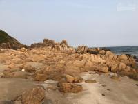 bán đất khu du lịch bãi từ nham thị xã sông cầu diện tích đa dạng 1000m2 đến 4 hecta 0906496189