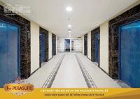 căn hộ the pegasuite đang bàn giao giá tốt nhất hàng thật nhất lh 0909467505