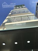 cho thuê vp bạch đằng tân bình 60m2 tầng 2 view kính giá 195trtháng free phọp lh 0911162165