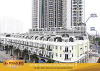 chính chủ bán nhà phố mới xây 5 tầng thiết kế của đức giá 12 tỷ đường tạ quang bửu q8