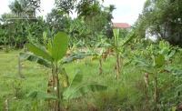 bán nhà có vườn ao cá cây ăn trái kế mặt tiền xã bình mỹ 1100m2 giá 19 tỷ shr