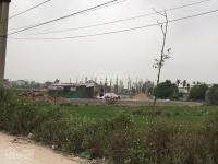 bán đất đấu giá thôn sinh liên xã bình minh sổ đỏ chính chủ mặt đường lớn tiện kinh doanh