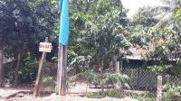 bán đất chính chủ tại cầu cao lãnh trồng cây lâu năm có 300m2 thổ cư giá thương lượng lh0939927033
