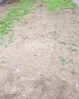 mảnh đất vị trí cực đẹp giá lại bình dân dễ mua 34m2 mt 5m đình xuyên gia lâm đường rộng 10m