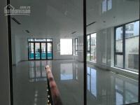 cho thuê tòa nhà văn phòng 75x32m 7 lầu mặt tiền đường cách sân bay 200m