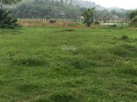 cần bán 3600m2 đất thổ cư chỉ với 25 tỷ tại yên bài ba vì hà nội