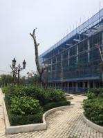 chính chủ bán căn louis 529 100m2 trước view vườn hoa giá 55trm2 lhcc a dũng 0912826119