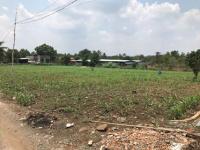 chính chủ cần bán trang trại xã bảo hòa huyện xuân lộc tình đồng nai