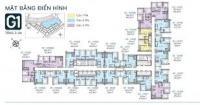 chính chủ cho thuê căn 22 01 2pn chung cư vinhomes green bay mễ trì lh 09 7557 6836