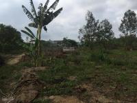 bán đất đường đồng nai 12x100m tc 200m2