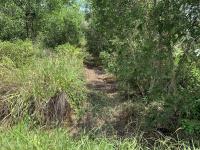 trí bđs đất 8750m2 mặt tiền kênh 9 gần đất đẹp có nhà đã lên líp trồng cây ao nước giá tốt