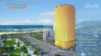 căn hộ trung tâm thành phố quy nhơn giá từ 16 tỷcăn lợi nhuận cam kết 10năm lh 0902481155