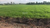 bán đất công huyện đức hòa giá rẻ đầu tư 1010m2 xã hòa khánh nam giá 1 tỷ 350tr