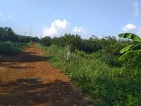 bán đất rẫy đất cao su làm trang trại giá rẻ nhất lộc ninhbình phước
