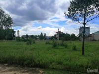 vợ chồng sang úc định cư bán đất 450m2 giá rẻ 650tr150m2