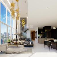 sở hữu biệt thự trên không siêu đẳng cấp với giá chỉ từ 125trm2 mua trực tiếp cđt lh 0901 986 687
