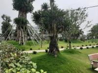 bán đất nền biệt thự dự án phú cát city tại khu công nghệ cao hòa lạc liên hệ ngay 0906036113