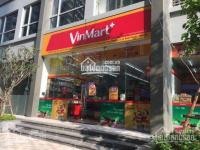chính chủ bán shophouse vinhomes 162m2giá 27 tỷ toà central 2 hợp đồng thuê 15067tr 0977771919