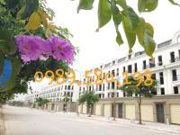 bán đất đấu giá đường ngô xuân quảng trâu quỳ 0989580198