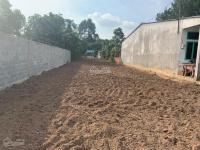 bán đất hai mặt tiền dt 98 x 100m tại đường bùi thị điệt xã phạm văn cội củ chi