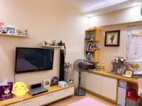 chính chủ cần bán gấp căn hộ Nguyễn Sơn nội thất cao cấp 0889 456 357