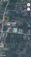 Bán 1050m2 đất xã Song Phương Đại Lộ Thăng Long LH: 0902124181