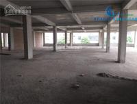 Cho Thuê Tòa Nhà 500 m2 X 7 Tầng 1 Hầm Khu Trần Thái Tông Lô Góc LH: 0977812386