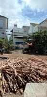 Cần mua nhà quận Bình Chánh, Hóc Môn