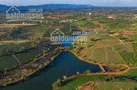 bán lô đất ngay đường lý thái tổ quy hoạch thành khu dân cư đầy đủ tiện ích có bảo vệ 2424