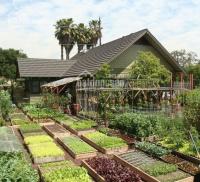 bán khu nhà vườn sinh thái nơi tận hưởng không gian sống 0911 511 399