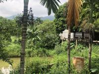 bán đất trang trại nhà vườn tại phú mãn quốc oai hn dt 12 ha