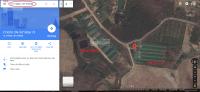 Bán trang trại nuôi heo, gà tiêu chuẩn CP 56ha giá 8,5 tỷ LH: 0938114399